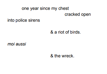 birds, opening act: one year since my chest / cracked open / into police sirens / & a riot of birds. / moi aussi / & the wreck.