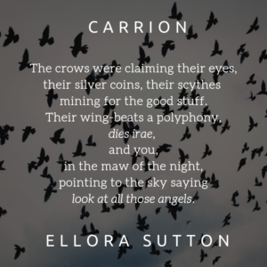 The crows were claiming their eyes, their silver coins, their scythes mining for the good stuff. Their wings beat a polyphony, dies irae, and you, in the maw of the night, pointing to the sky saying look at all those angels.