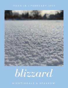 N&S Issue IX blizzard