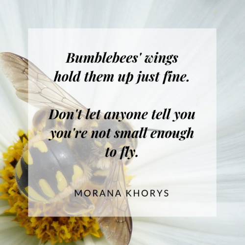 Bumblebees' Wings