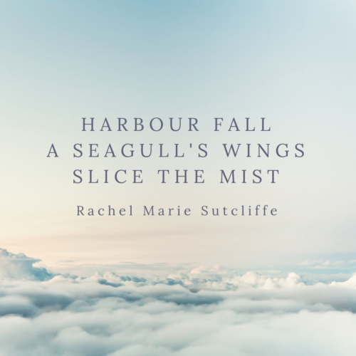 Harbour Fall