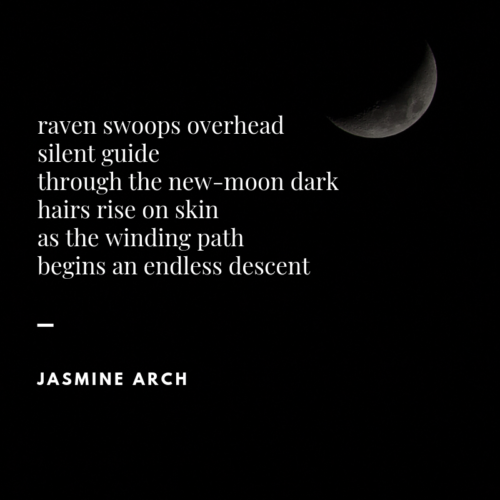 micropoem - nevermore - [raven swoops overhead]