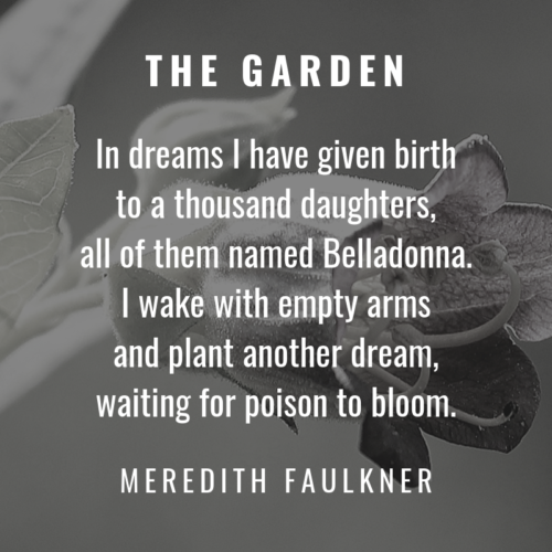 micropoem - nevermore - the garden