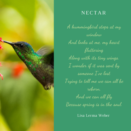 renaissance - micropoems - Nectar