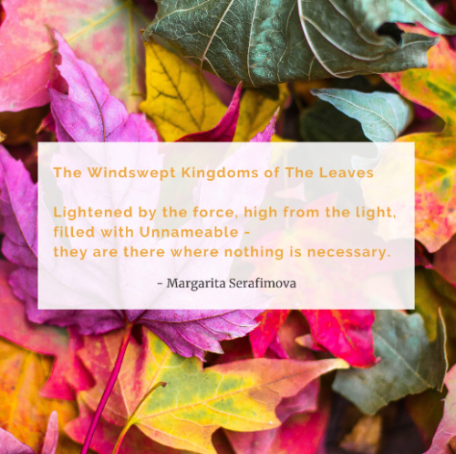 the windswept kingdom of the leaves
